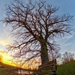 Sonnenuntergang in Sommersdorf/Burgoberbach